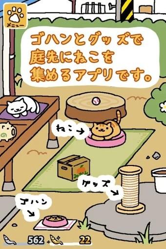 猫咪后院手游